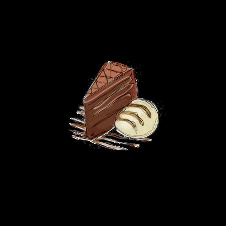 FOOD SKETCH-FUDGE CAKE